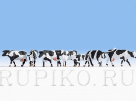 Noch 15725 Стадо коров