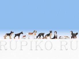 Noch 15717 Собаки