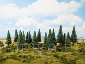 Noch 24640 Хвойный лес