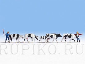 Noch 15724 Стадо коров