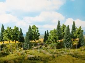 Noch 24620 Смешанный лес
